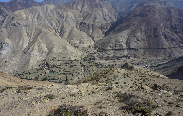 Dolpo Fieldresearch